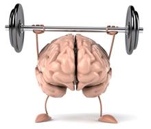 Bosbessen gezond voor hersenen