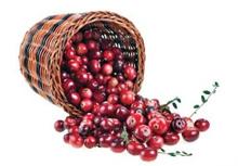 Cranberries gezond