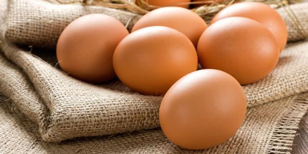 Eieren - eiwitrijk eten