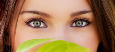 Is avocado gezond voor je ogen