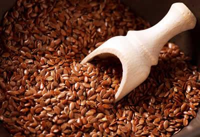 Lijnzaad - eiwitrijke voeding