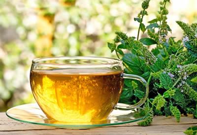 Zwangerschapsmisselijkheid - pepermunt thee - gezond10