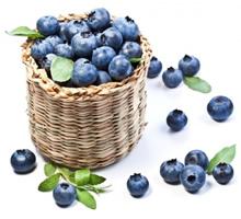 antioxidanten in bosbessen