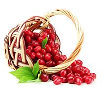 cranberries gezond ontstekingsremmers