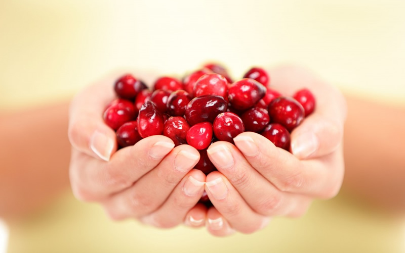 cranberry eten gezond