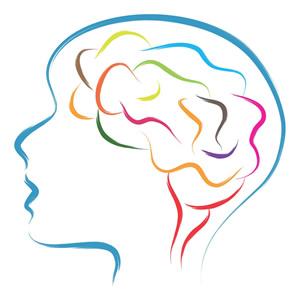 creatine hersenen