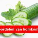 komkommer gezond - gezond10